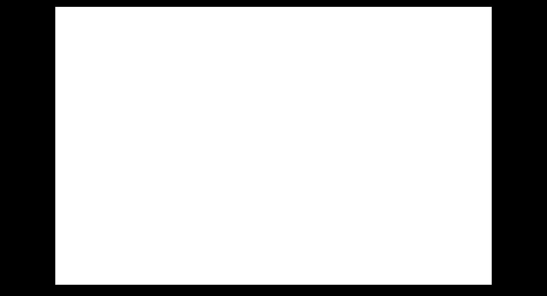 Pau de Canela